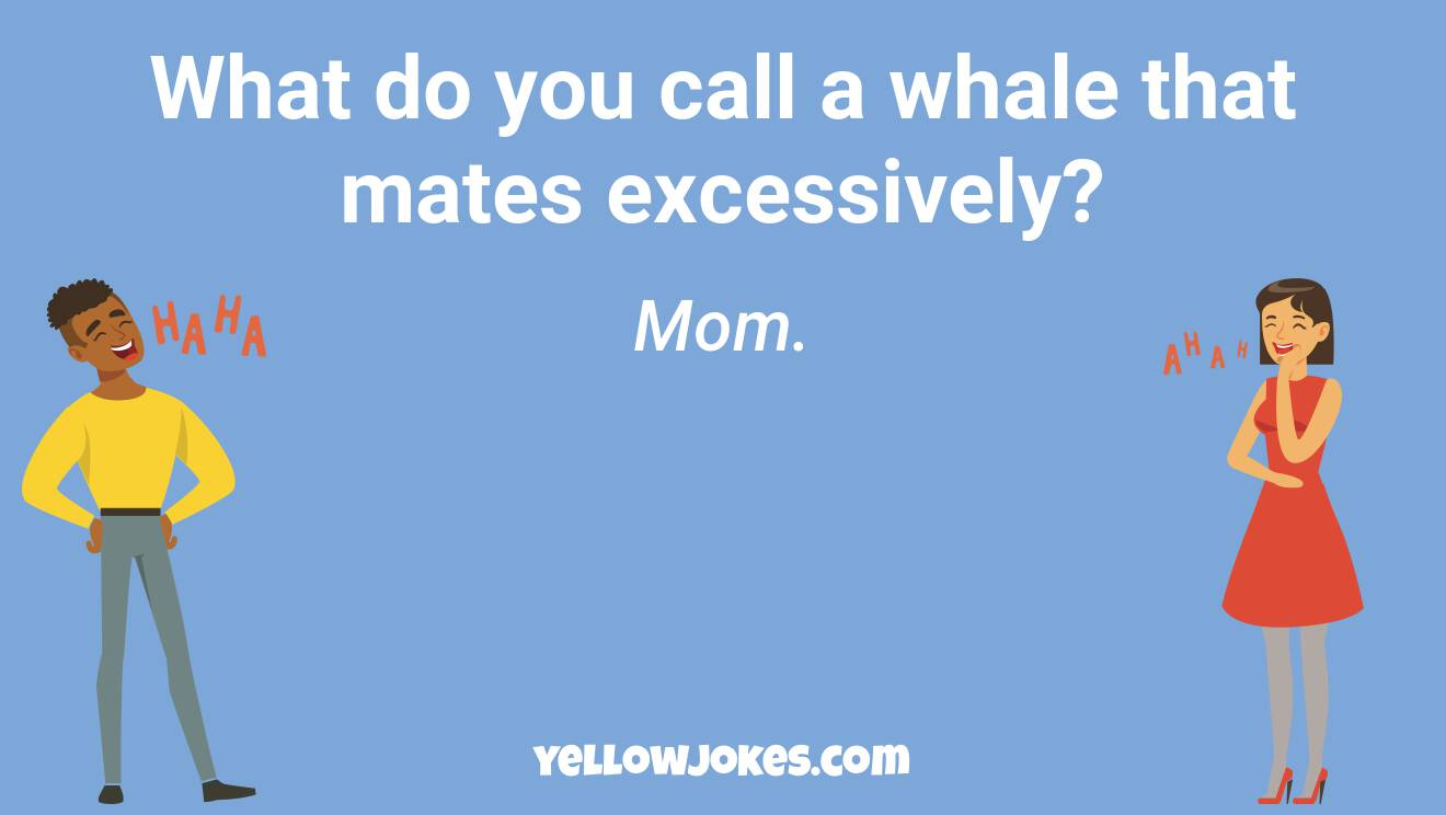 Funny Whale Jokes